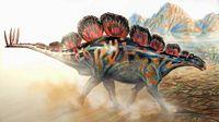 Wuerhosaurus SCHELETON | wuerhosaurus