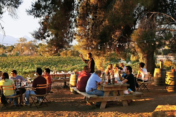Resultado de imagen para ruta del vino ensenada