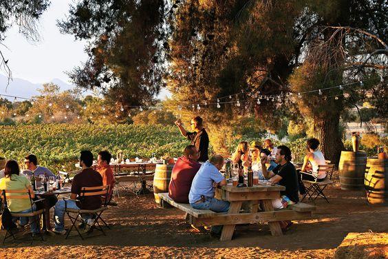 ...Valle de Guadalupe: vinos de México!