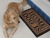 'Home is Where the Dog Is' doormat, found by blogger Carrie at HomeGoods. Perfect for any animal lover!