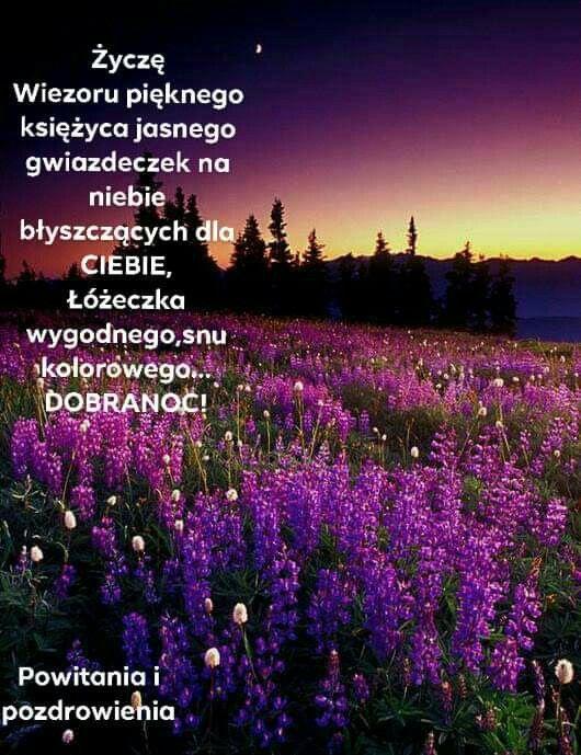 Pin By Wanda Swoboda On Miłego Wieczoru Dobranoc Dzień