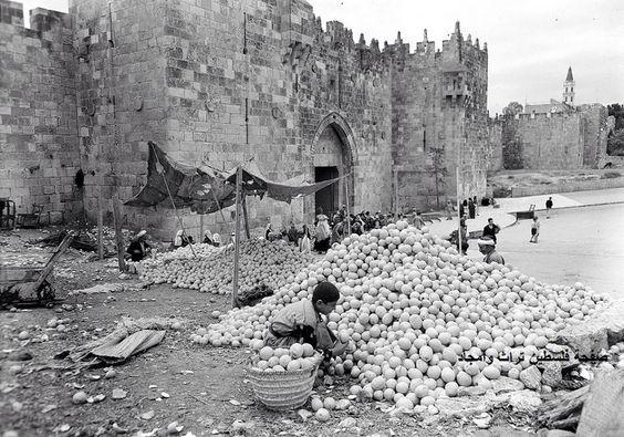 موسم البرتقال اليافاوي القدس، فلسطين ١٩٣٠ Jaffa's Orange season Jerusalem, Palestine 1930 Temporada de Orange de Jaffa Jerusalén, Palestina 1930