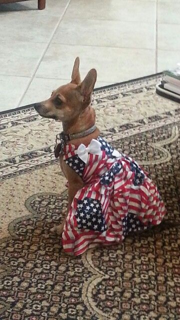 Delilah in her beautiful July 4th dress
