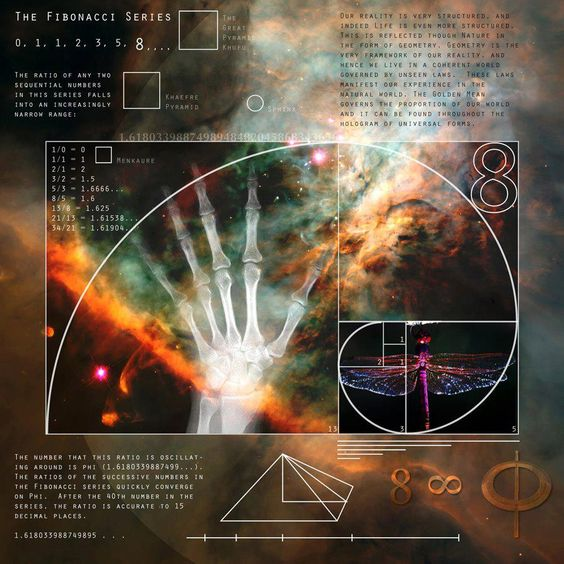 ".The Fibonacci Sequence... Or Golden Ratio Φ / φ... The blueprint for reality...    Fibonacci sequence of numbers... Each number is the sum of the previous two numbers... Starting with 0 and 1... This sequence begins... 0, 1, 1, 2, 3, 5, 8, 13, 21, 34, 55, 89, 144, 233, 377, 610, 987... This can go on... Well forever...    ""All is number..."" ~Pythagoras~"