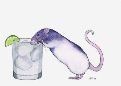 Rachel Fisher | WATERCOLOR | Gina's Gins and Tonic