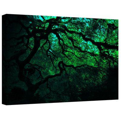 Art Wall ''Japanese Dark Tree'' by John Black Photographic Print Canvas