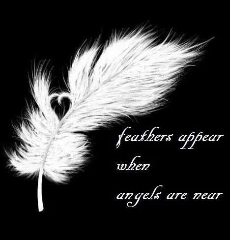 "Yes. ""Feathers appear when Angels are near"""