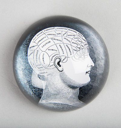Phrenology Head Paperweight. Fabulous Phrenology Head Glass Paperweight from Sass and Belle. A great addition to any desk or workspace. #sassandbelle #paperweight #phrenology #phrenologyhead