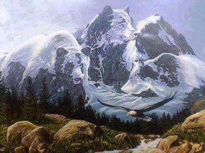 optical hidden illusions faces google animals native illusion animal american many painting eye indian part