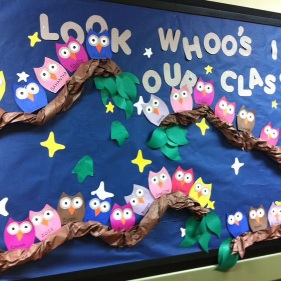 Owl bulletin board -Look whoo's in our class....Woot woot already goes with my theme and tree!!!