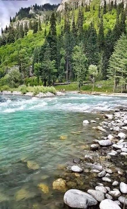 The Natural Beauty Of Swat Beautiful Places Nature Pakistan Pictures Nature