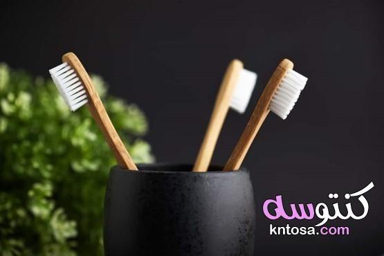 كيفية تنظيف فرشاة الأسنان أهمية تنظيف فرشاة الأسنان كيفية تنظيف أسنانك Toothbrush Holder Brushing Teeth