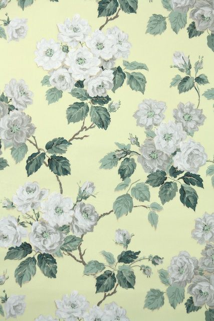 Dreamy And Classic Boxwood Gardens: I Think These Gray Roses Are Just Dreamy. A Pretty Vintage