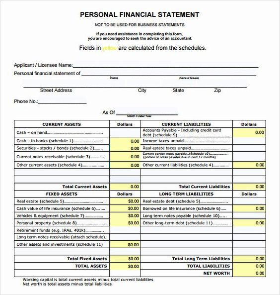 Personal Financial Statement Template Elegant 8 Sample Example Templ Finance Examples