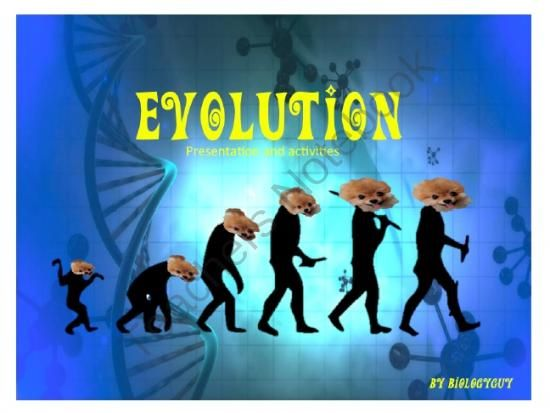 """evolution powerpoint sci 230 Background: """"humanized"""" mutants of bacterial dihydrofolate reductase were examined to relate protein dynamics with enzyme evolution sci usa 110, 10159–11064) here, we measured intrinsic kinetic isotope effects for both n23pp and n23pp/g51pekn double mutant dhfrs over a temperature."""