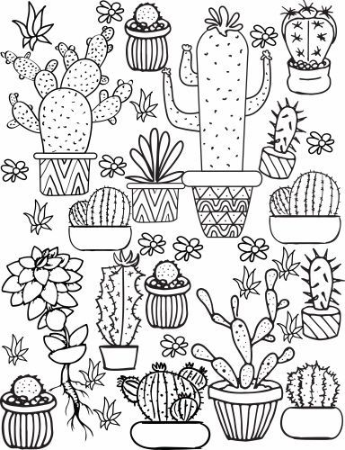 Cactus Coloring Page Sunflower Coloring Pages Succulent Printable Pattern Coloring Pages