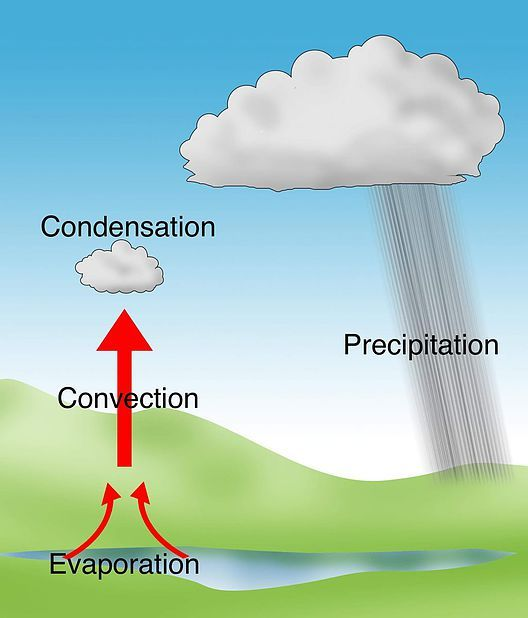Types Of Rainfall Convectional Rainfall Diagram Types Of Rainfall Precipitation Rainfall