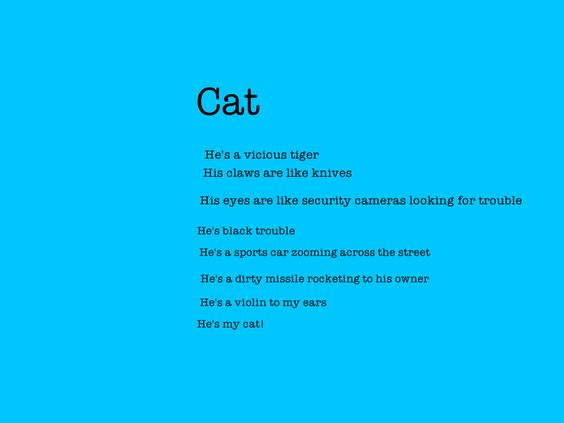 Write a Simile Poem ... Starring Your Pet!