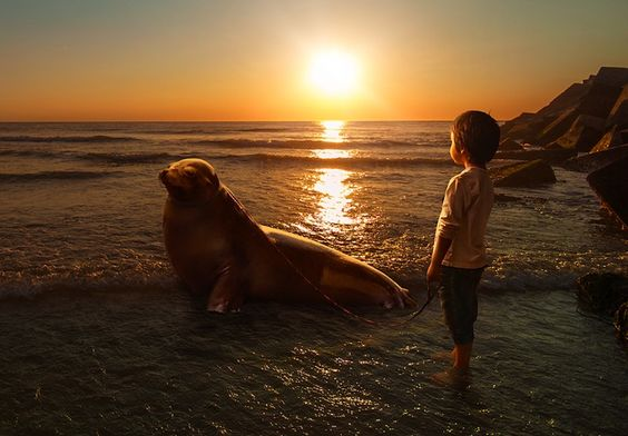Photographer Takes Sweet Photos of His 6-Year-Old Son -