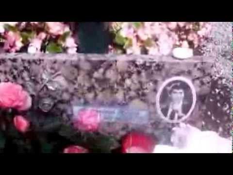 Liliane Scharf Besuchte Das Grab Von Roy Black Gerhard Hollerich Youtube Es Tut Mir Leid Singen Gerhard