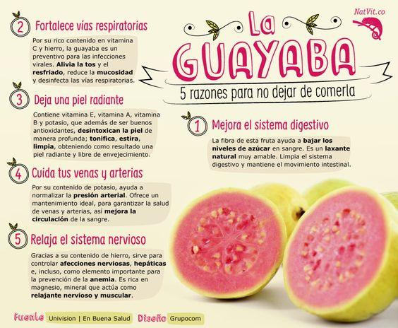 Resultado de imagen para CAPSULAS HOJA DE GUAYABA