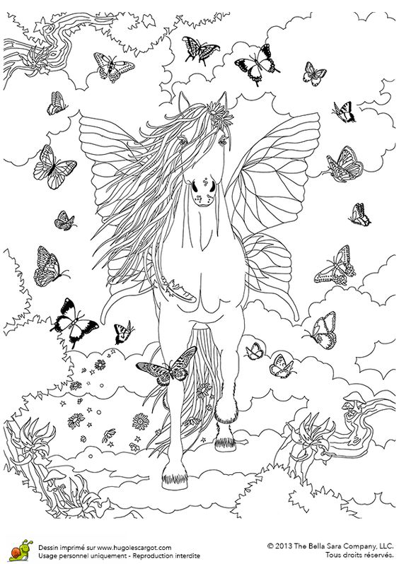 Butterfly Pegasus Fantasy Myth