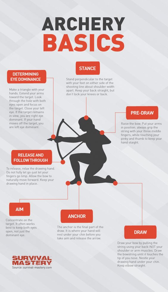 Basic facts about archery infographic #fishingarchery