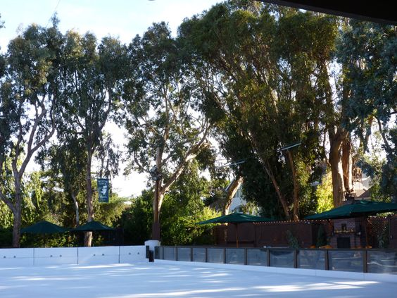Winter Lodge ice skating rink
