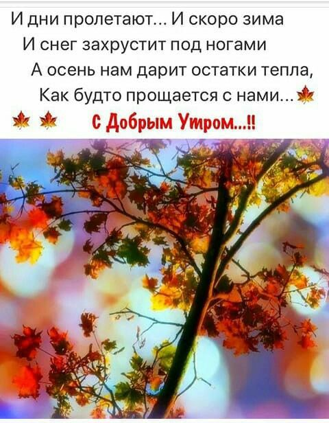 Pin Ot Polzovatelya Nataliya Nikolaeva Na Doske Osen Osennie