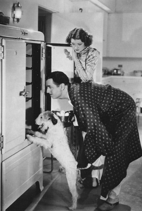 """The Thin Man"" films with Myrna Loy, William Powell and Asta  I love these movies.:"