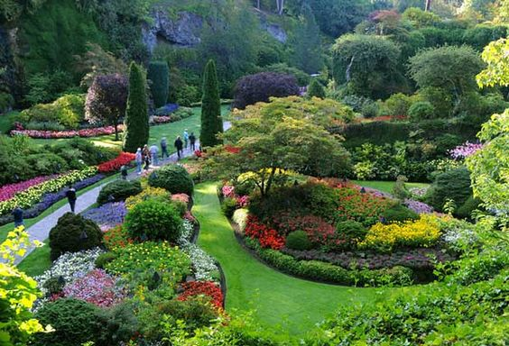 Top 10 Gardens to Visit for Spring Flowers: Butchart Gardens - Over 50 acres of delicate flora deck out this Vancouver Island garden. In springtime the crocuses, white forsythia and roses flourish, and you'll also love the amaryllis and striking orchids in the greenhouse. Over 100 years old, don't miss the Sunken Garden (formed from an abandoned limestone quarry), the Victorian style walking paths lined with fragrant shrubs and the ornate Japanese Garden.