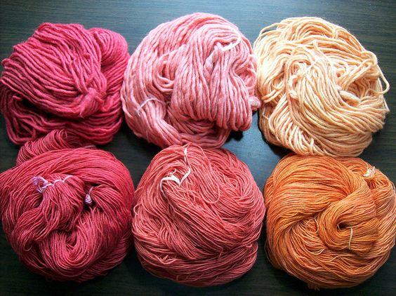 Pflanzenfarben 2013: Färben mit Rotholz