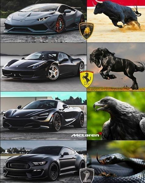 Cars For Teens Luxury Cars Cars Accessories Cars Night Cars