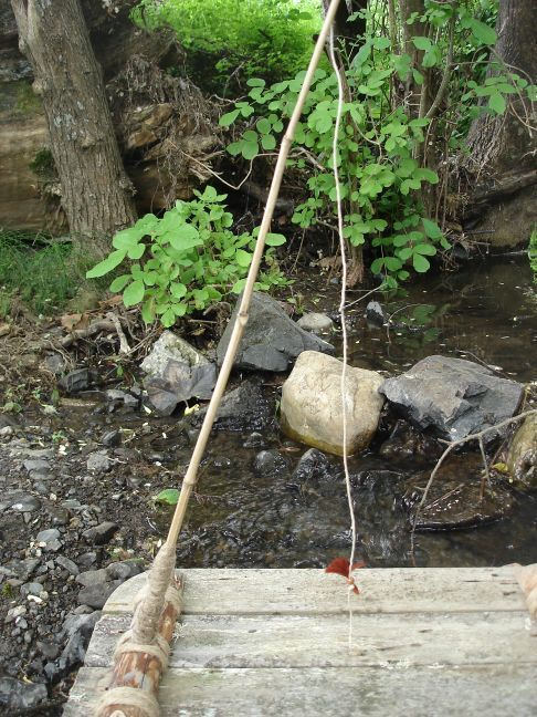 Pinterest the world s catalog of ideas for Bamboo fishing pole