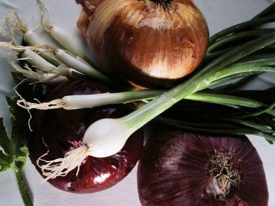 Healthy Salad Vegetables: Onions