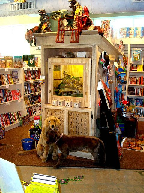 Under the Sycamore Tree Children's Bookstore in Grayslake, IL