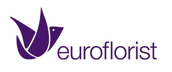 Hier finden Sie unsere EuroFlorist Erfahrungen in einer knackigen Zusammenfassung, die nur noch ein Klick entfernt ist!