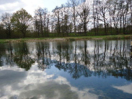 view in the netherlands   My photography   Pinterest   The ...