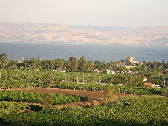 Kibbutz Ginosar by Sibboleth, via Flickr