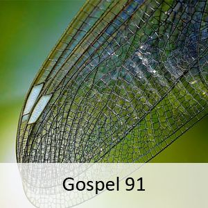 You can select your favorite stations and add them in a separate list  https://play.google.com/store/apps/details?id=com.Mushfiq.SouthernGospelRadio