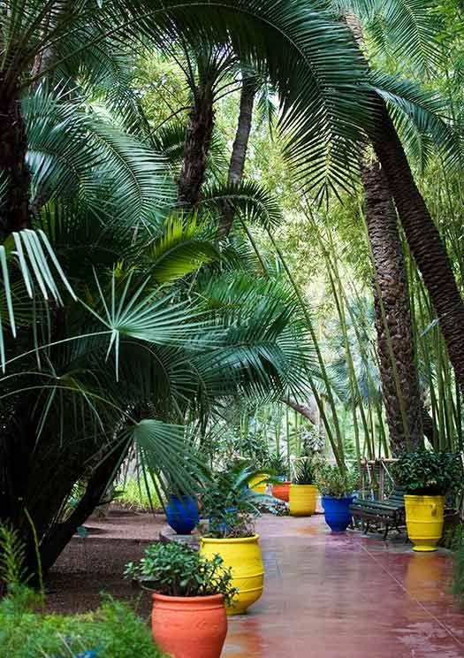 Majorelle Garden, Marrakech - TripAdvisor's  most talked about attractions of 2012 #CheapflightsGG