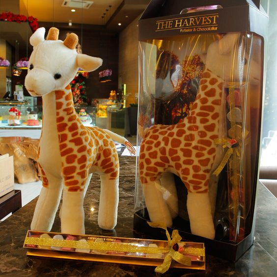THE HARVEST • Products - GIRAFFE