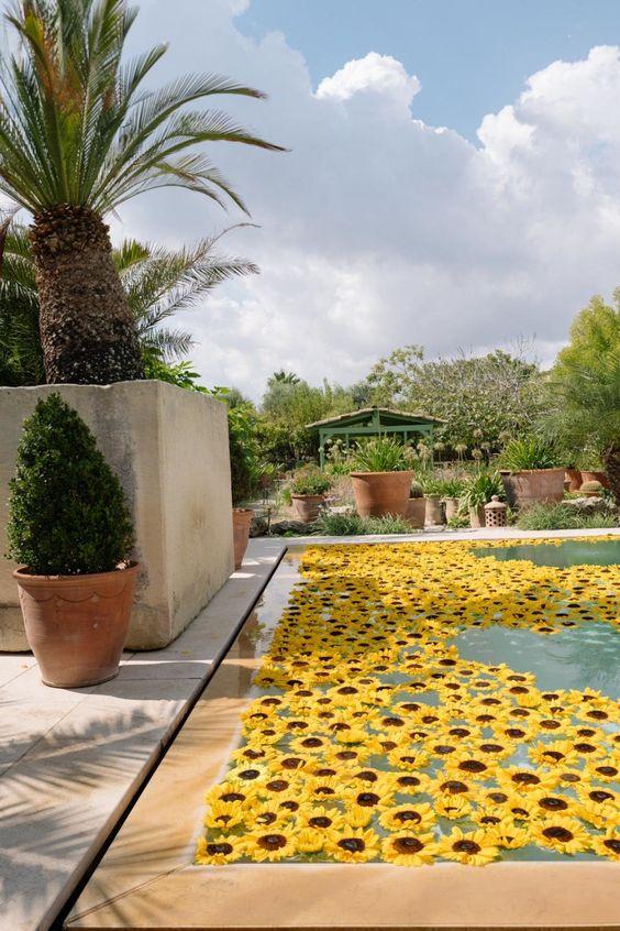 Idee per decorazioni piscina! 2