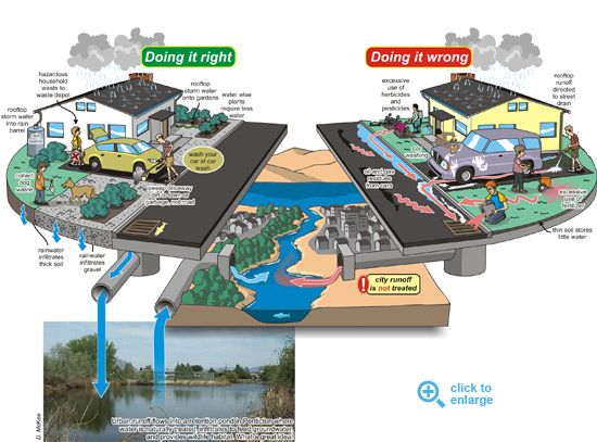 Another great illustration of urban runoff. | Stormwater ...