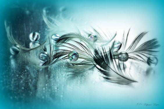 Photo Bluish Prose par Lafugue Logos   on 500px