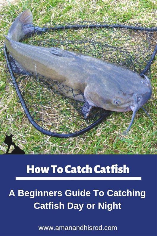 Fishing Games Unblocked Fishing Xtratuf Ocean And Fishing 7th Class Fishing Challenge Far Cry 5 How To Catch Catfish Catfish Fishing Best Catfish Bait