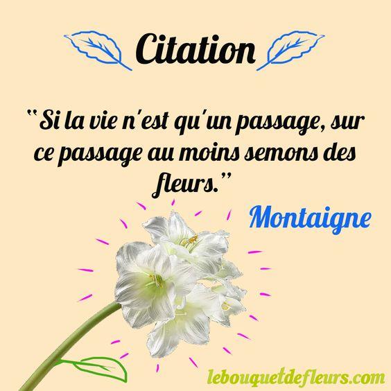 """Citation """" Si la vie n'est qu'un passage au moins semons des fleurs."""" Montaigne"""