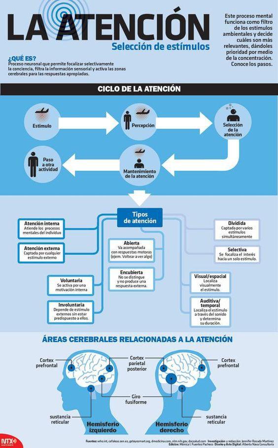 Atención: qué es y cómo funciona #infografia #infographic #psychology: