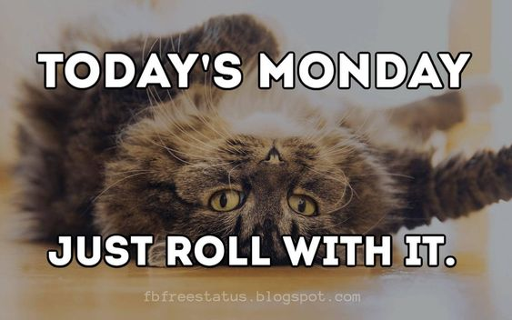 happy monday funny images