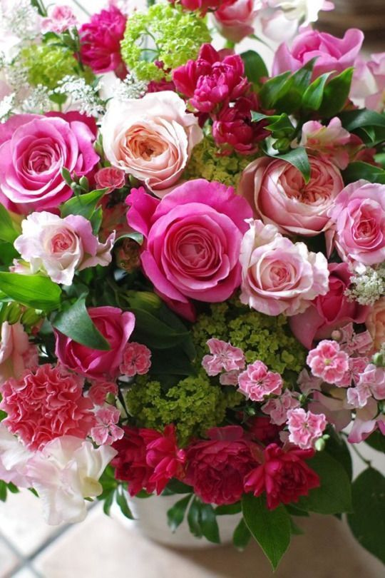 Pin By محمد حسين الدخاني On Fleur And Flora S Florist Shop Beautiful Rose Flowers Beautiful Flowers Flower Arrangements